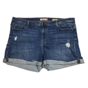 Plus Size 3XL Jean Shorts Stretch Distressed Blue
